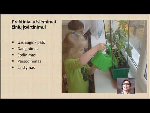 Nacionalinės gamtos mokyklos biosfera: nuo vizijos – sukūrimo link. Pasaulio žaliasis rūbas kiekvienam.