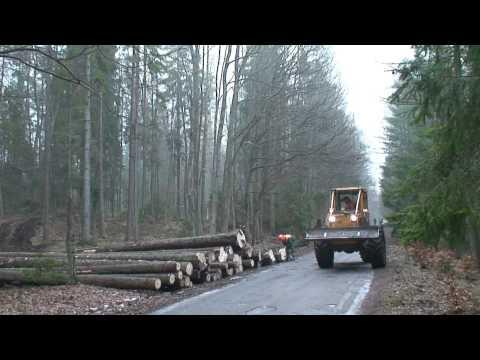 Praca w lesie - zrywka skider