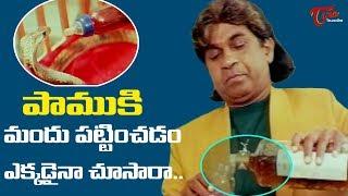 పాముకి మందు పట్టించడం ఎక్కడైనా చూసారా..?   Telugu Movie Comedy Scenes   TeluguOne - TELUGUONE