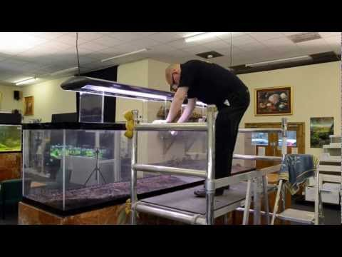 'Reciprocity' Aquascape by James Findley - The Making Of