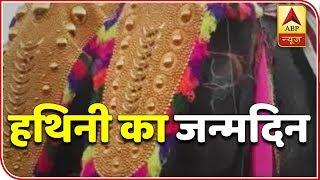 Bihar: Man celebrates pet elephant's 8th birthday in Samastipur - ABPNEWSTV