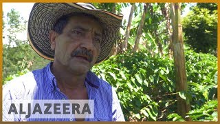🇨🇴 Colombia's coffee workers despair over low wage l Al Jazeera English - ALJAZEERAENGLISH