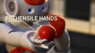 الروبوت «ناو» أحدث موظف متعدد اللغات في بنوك اليابان