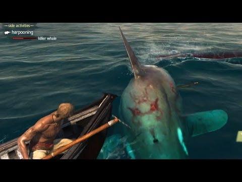 ассасин 4 белый кит видео