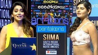 SIIMA Short Film Awards Event 2019 || SIIMA || Telugu Entertainment Tv - YOUTUBE