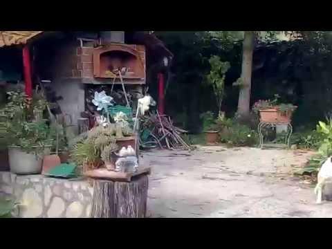Test Video Wiko Highway