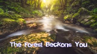 Royalty FreeSuspense:The Forest Beckons You