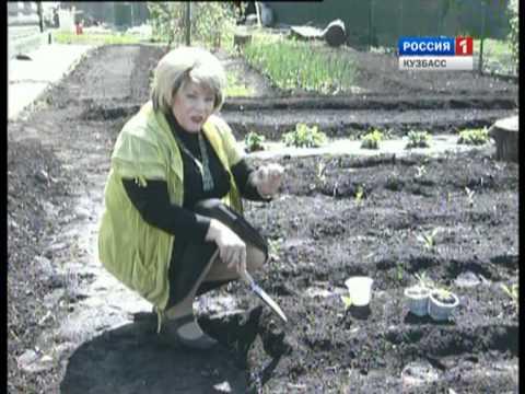 tolpa-muzhikov-konchayut-devka-porno