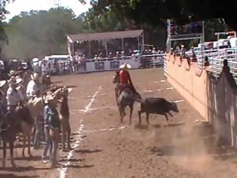Competecia de Colas Lienzo Charro Los Arpero