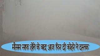 video : घने कोहरे के कारण वाहन चालकों को हो रही परेशानी