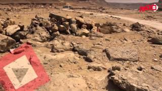 اتفرج | الاحتفال بيوم الأرض في محمية وادي دجلة بالمعادي