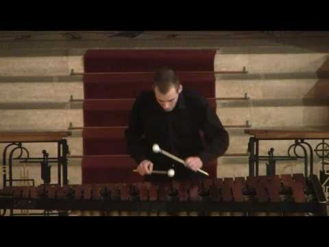 J.S. Bach - Cello Suite No. 2 in D minor BWV 1008 - Simon Bence - Marimba