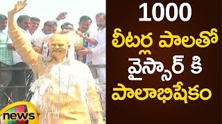 YCP Leaders Offers Great Honour For YSR Statue With Milk | YCP Latest News | Mango News - MANGONEWS