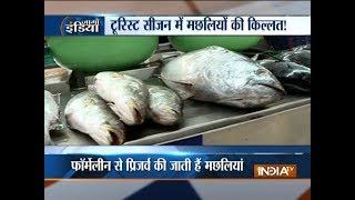 Maharashtra asks Goa to lift ban on import of fish - INDIATV