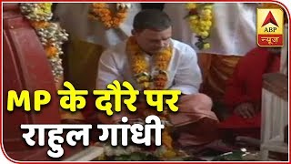 Rahul Gandhi offers prayers at Pitambara Peeth in poll-bound Madhya Pradesh - ABPNEWSTV