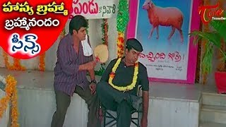 All Time Hit Telugu Movie Comedy Scenes Back To Back | Brahmanandam | Sunil | NavvulaTV - NAVVULATV