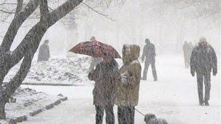 ما يواجه المواطن البردان في