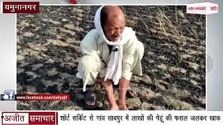 video : Yamunanagar - शॉर्ट सर्किट से Village Sabpur में लाखों की Wheat Crop जलकर खाक