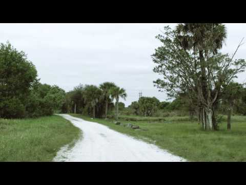 DuPuis Reserve - BlackMagic Pocket Cinema Grade Test 2