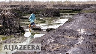 UK court hears appeal in Shell Nigeria oil spill case - ALJAZEERAENGLISH