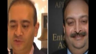 In Graphics: Know, 10 important things about PNB scam, How Nirav Modi did this sacam - ABPNEWSTV