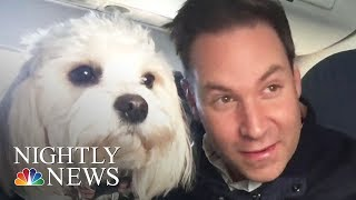 Delta Issues New Rules On Emotional Support Animals | NBC Nightly News - NBCNEWS