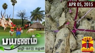 Payanam 05-04-2015 About Dense Forests and Lush Greeneries – Thanthi tv show