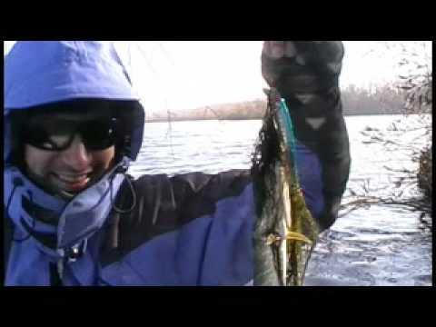 рыбалка на днепре видео киев