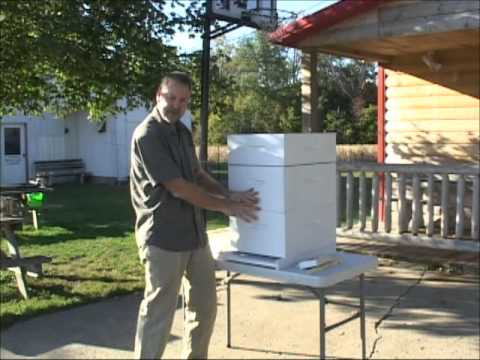 Beekeeping - Getting Started With Equipment