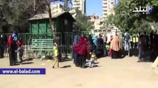 بالفيديو.. زحام في حديقة حيوان الفيوم حول بيت الأسد والجمل الجبلي