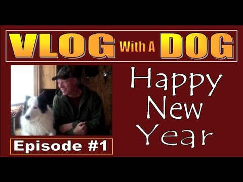 CABIN LIFE.  A VLOG WITH A DOG   Introductory Episode to my vlog series.