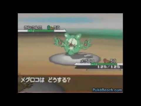 Pokemon Black and White Wild Battle Gameplay
