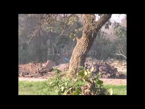 Vecinos de Barrio El Vergel reclaman por incendios en una cava de Peñaloza al 8700