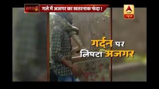 Sansani: Python attacks snake charmer while people become mute spectators - ABPNEWSTV