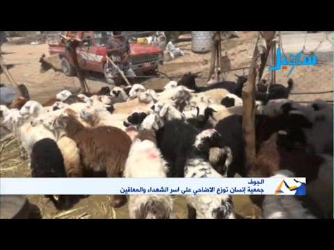 الجوف | جمعية انسان توزع الاضاحي على اسر الشهداء والمعاقين برعاية محافظ الجوف