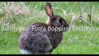 Royalty FreeComedy:Bunny Foo Foo