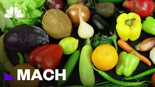 Lab-To-Table: How Synthetic Food Went From Flavorings To Hamburgers | Mach | NBC News - NBCNEWS