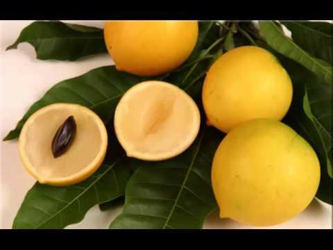 Bacupari Fruit Health Benefits