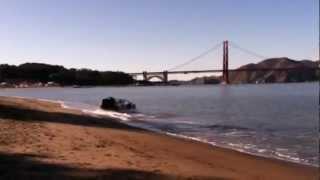 شاهد: سيارة ديلوريان تتحول إلى حوامة تطفو فوق سطح الماء