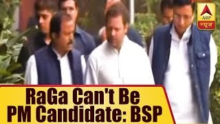 Rahul Gandhi cannot be the PM candidate, says BSP - ABPNEWSTV
