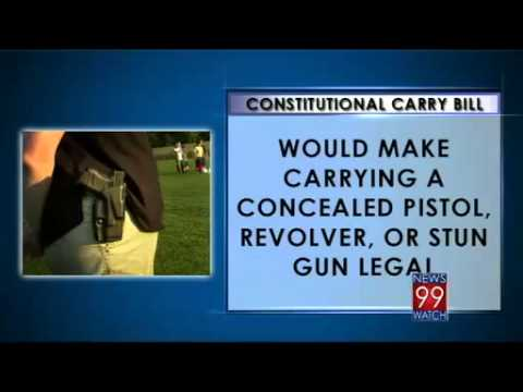Gun Law Changes