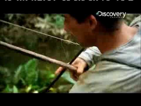 Man vs. Wild Ecuador Fishing Piranha