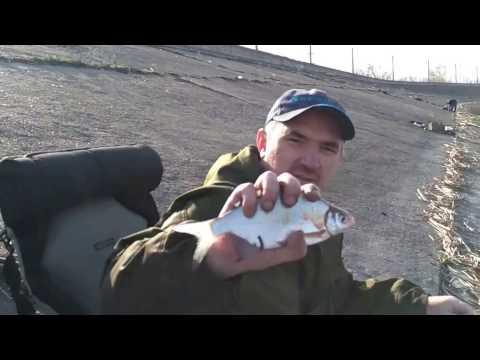 фидер на горьковском водохранилище