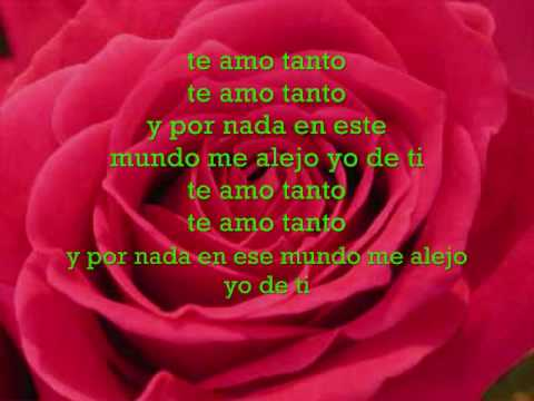 Flex-Te amo Tanto(Lyrics)