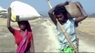 In village worst hit by Assam violence, houses burn, hundreds Flee - NDTV