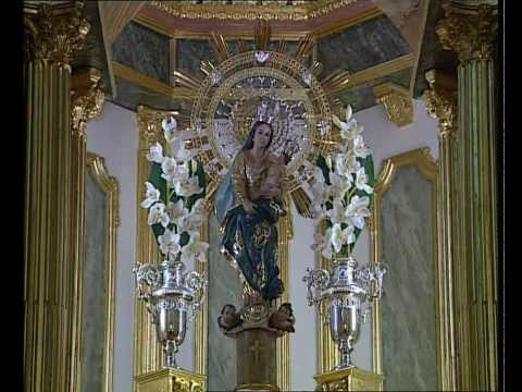 Descubre el municipio de LOS MONTESINOS