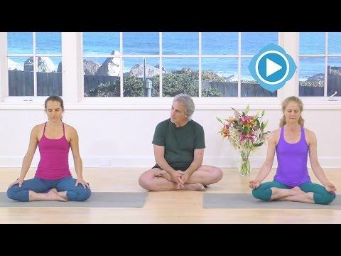 Shambhavi Mudra Meditation - Into the Wild - Richard Rosen