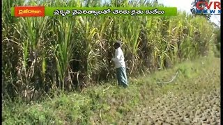 సిక్కోలులో చెరకు సాగు  | Srikakulam District Aims to Increase Sugarcane Produce | CVR NEWS - CVRNEWSOFFICIAL