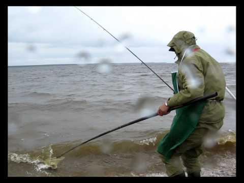 будет ли рыбалка в рыбинске