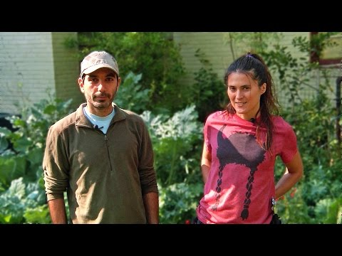 Permaculture Paradise: Val & Eli's Incredible Edible Food Forest! (Part2)